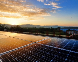 Solar 101: What Are Solar Panels?